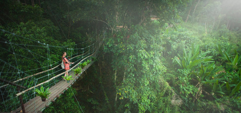 Indian Monsoon Getaways You Can Explore